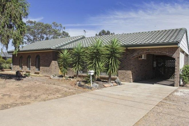Picture of 6 Edinburgh Street, MURRAY BRIDGE SA 5253