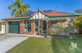 Picture of 19 Chevrotain Place, Chermside West QLD 4032