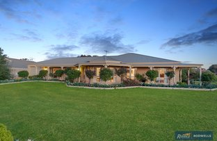Picture of 52 The Elms Boulevard, Kilmore VIC 3764