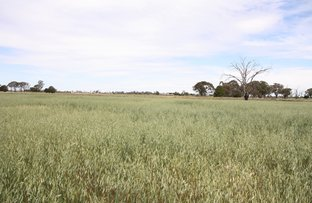 Picture of 1753 Sinclair Road, Tongala VIC 3621