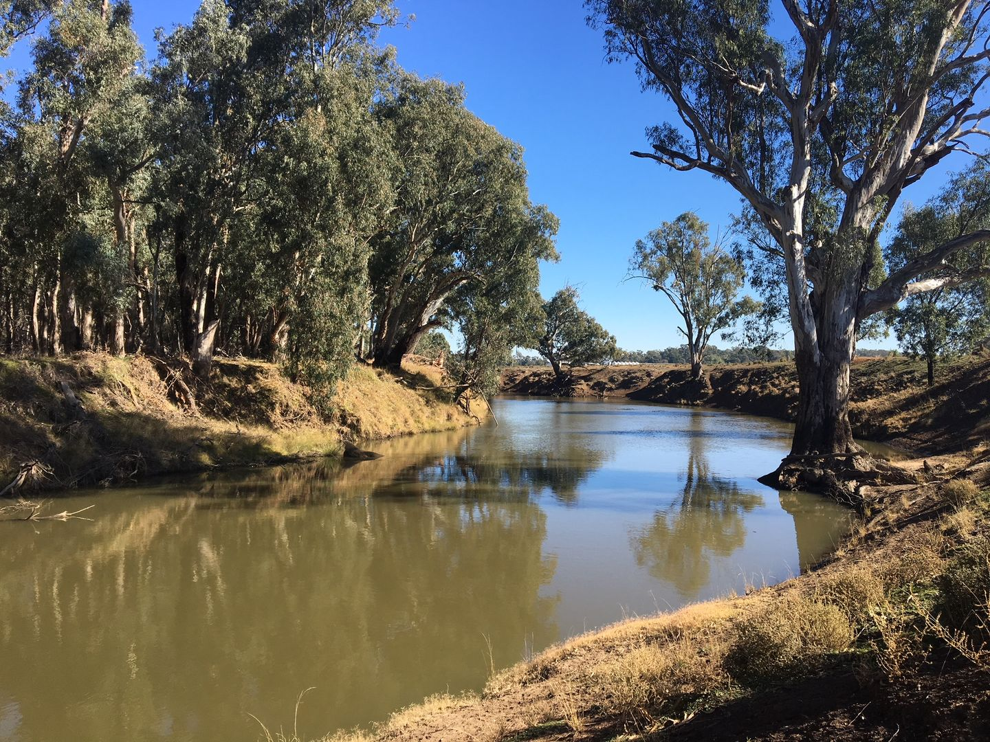 Wool Wash 125 North Condobolin Rd,, Forbes NSW 2871, Image 0