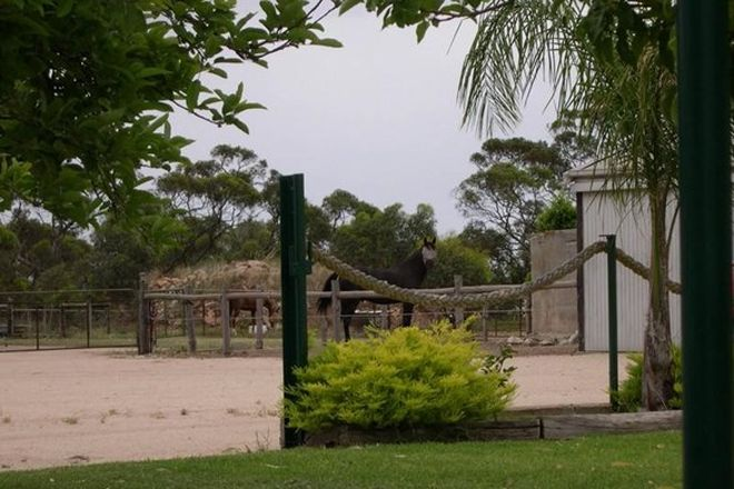 Picture of Lot 4 Twelvtrees Road, WAURALTEE SA 5573