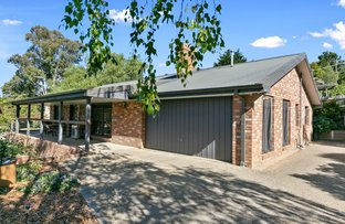 Picture of 3 Glenwright Avenue, Woori Yallock VIC 3139