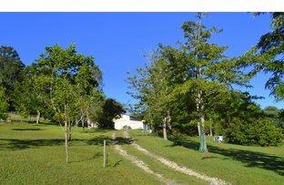 Picture of 685 Reids Road, Ballengarra NSW 2441