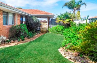 Picture of 19 Haskell Gardens, Clarkson WA 6030