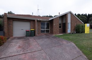 Picture of 8 Rodney Avenue, Canadian VIC 3350
