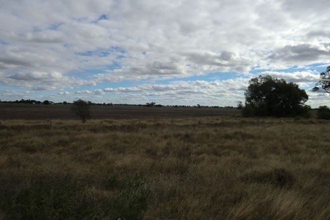 Picture of Part Brenda Walgett Rd, COONAMBLE NSW 2829