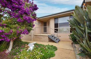 Picture of 3/17 Eric Fenning Dr, Surf Beach NSW 2536
