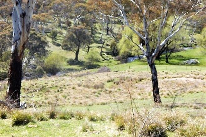 Picture of Lot 22 Bugtown Road, ADAMINABY NSW 2629