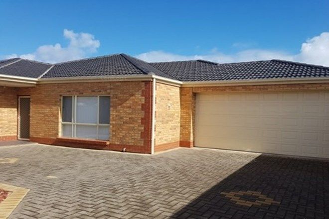 Picture of 8a Finchley Street, CLOVELLY PARK SA 5042