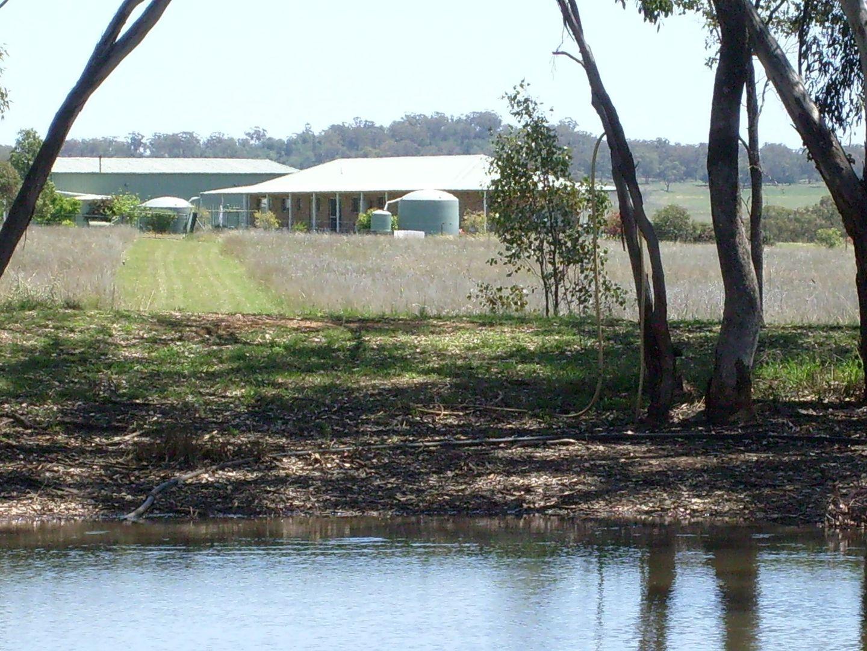 178 Quia Station Rd, Gunnedah NSW 2380, Image 2