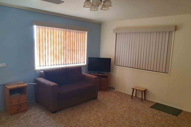 Picture of 21 Orchid St, BLACKALL QLD 4472