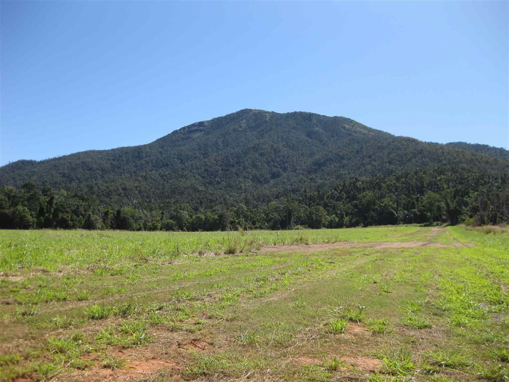 Lower Tully QLD 4854, Image 0