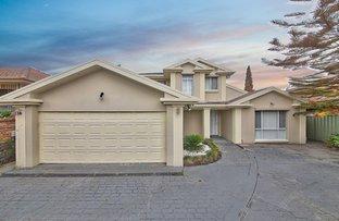 25 Lancaster Avenue, Cecil Hills NSW 2171