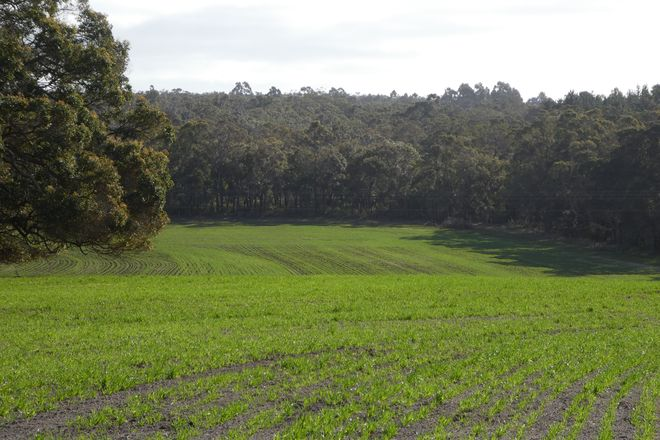 Picture of Lot B Mount Barker Hill Rd, MOUNT BARKER WA 6324