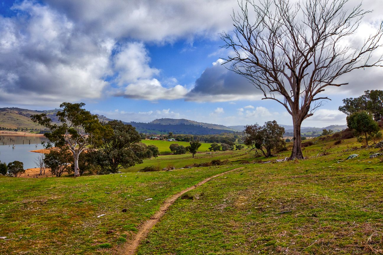 """Boxbourne"" River Road, Wymah NSW 2640, Image 2"