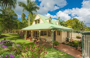 Picture of 118 Lone Hand Road, Eumundi QLD 4562
