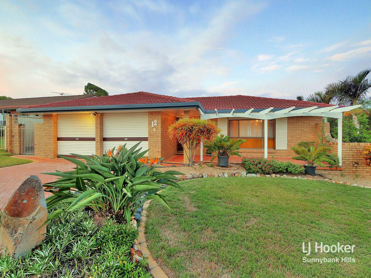 12 Snowberry Street, Sunnybank Hills QLD 4109, Image 0