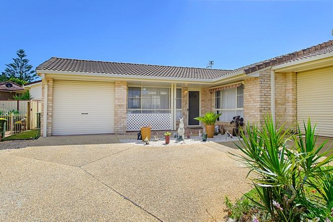 Picture of 3/39 Lady Nelson Drive, PORT MACQUARIE NSW 2444