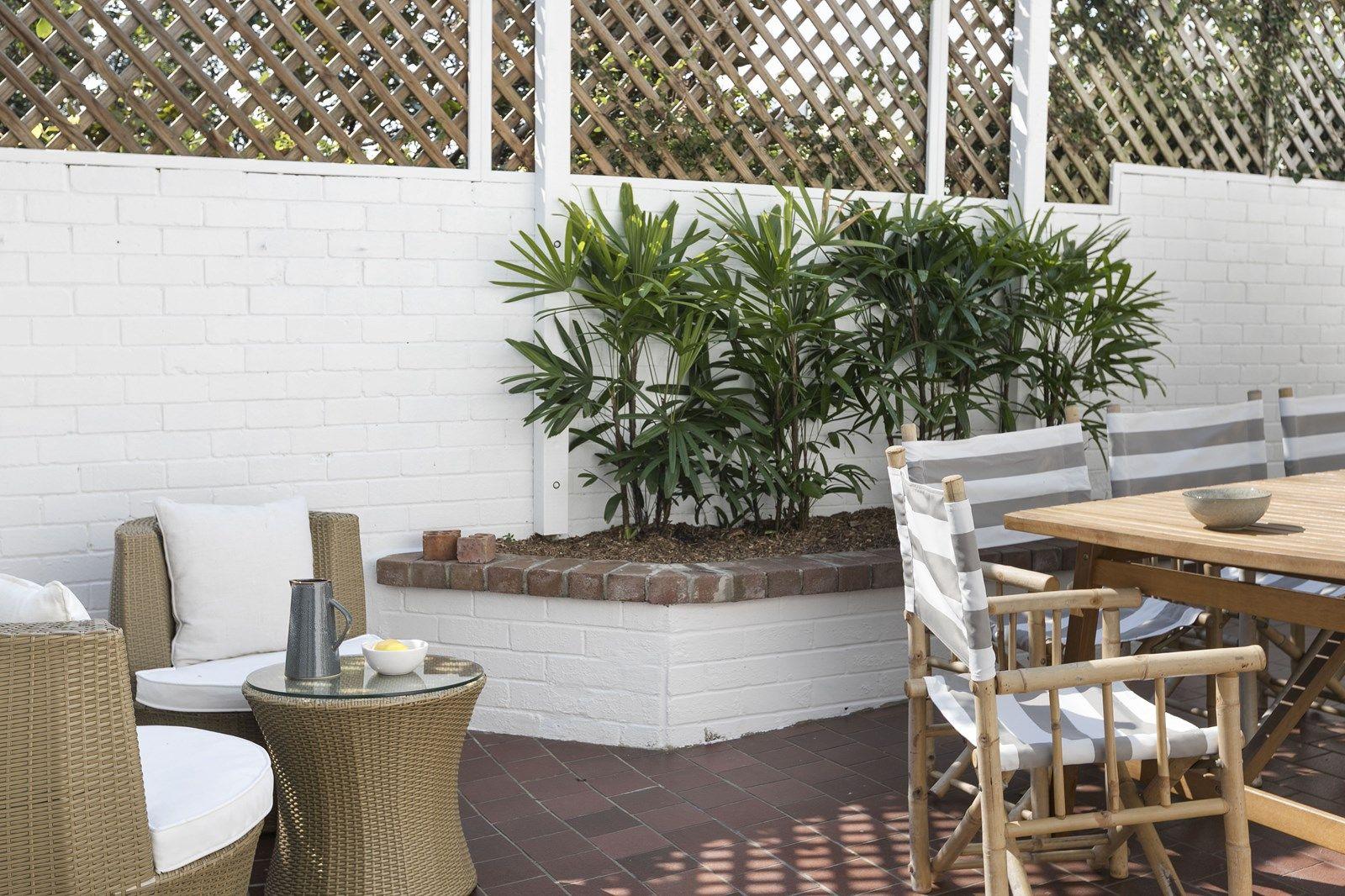 64 Ormond Street, Paddington NSW 2021, Image 2