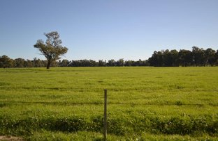 "Picture of Farm Narrandera Park ""Narrandera Park"", Euroley NSW 2700"