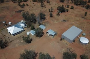 Picture of 1030 Emmet - Oma Road, Isisford QLD 4731