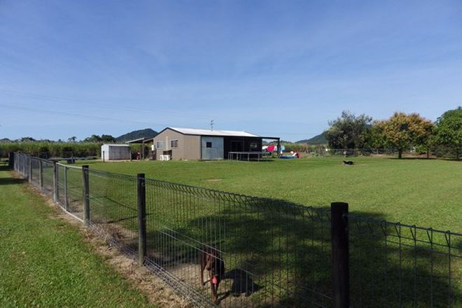 Picture of 68 Shell Pocket Road, SHELL POCKET QLD 4855