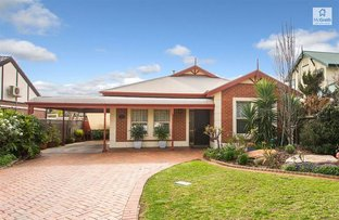 Picture of 60 Wilkins Grove, Glengowrie SA 5044