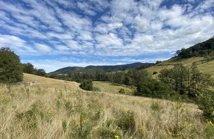 Picture of 82 Khatambuhl Creek Road, Cundle Flat NSW 2424