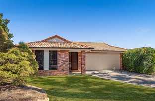 Picture of 14 Warrumbungle St, Forest Lake QLD 4078