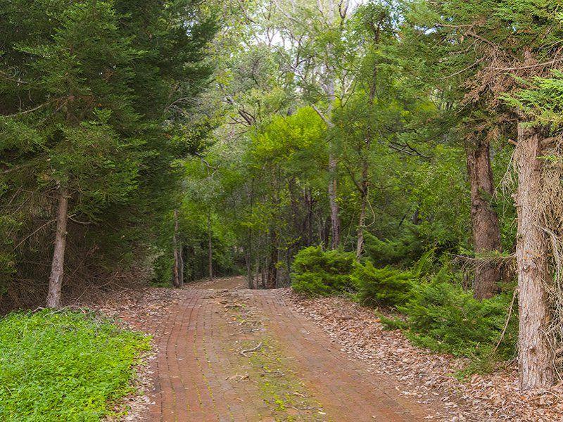 15 Crocus Road, Kalamunda WA 6076, Image 0