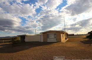 Picture of 1A Victoria Street, Forest Hill QLD 4342