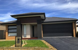 24 Pegasus Rd, Cranbourne West VIC 3977