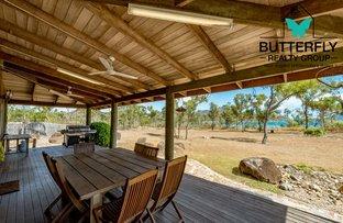 Picture of Dingo Beach QLD 4800
