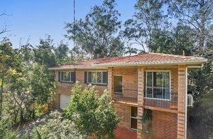 41 Struan Street, Chapel Hill QLD 4069