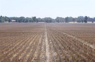 Picture of . Ellerslie Lane, Yerong Creek NSW 2642