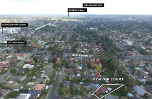 Picture of 8 Davor Court, Burwood East VIC 3151