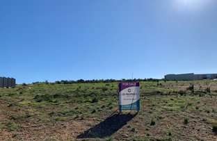 Picture of Lot 397 Rosella Rise, Mannum SA 5238