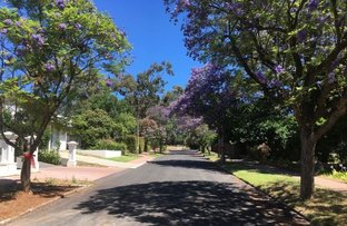 Picture of 6A Elm Grove, Magill SA 5072
