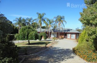Picture of 11 Hunt Drive, Robinvale VIC 3549
