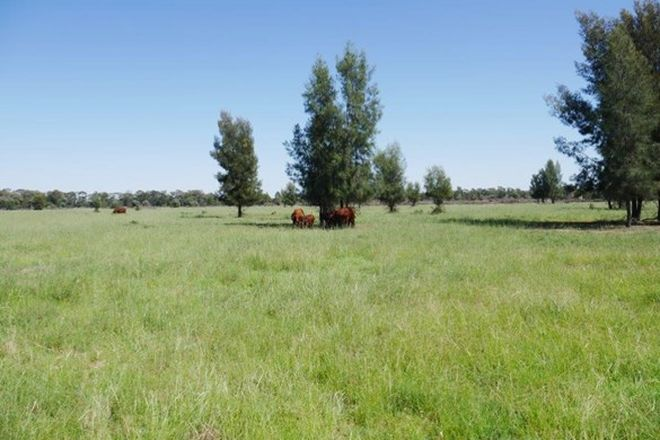 Picture of 2891 ACRES CATTLE GRAZING, TARA QLD 4421