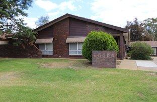 Picture of 3/31 WREN STREET, Mount Austin NSW 2650