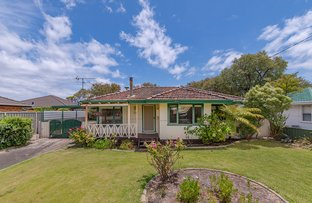 Picture of 21 Moylan Way, Geographe WA 6280