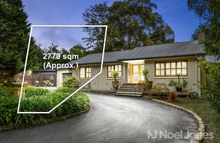 Picture of 29 Wingate Avenue, Ringwood East VIC 3135