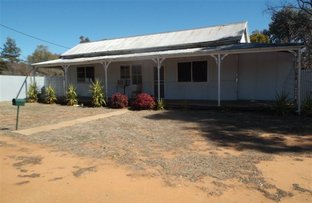 Picture of 44  Castlereagh Street, Baradine NSW 2396