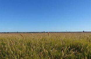 """Picture of . """"Avalon"""", Mitchell QLD 4465"""