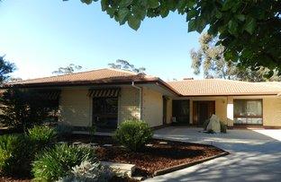 2 Digby Court, Berri SA 5343