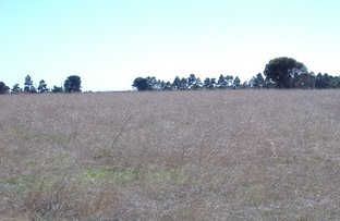 Picture of Lot 50 Grainstack Road, Stansbury SA 5582