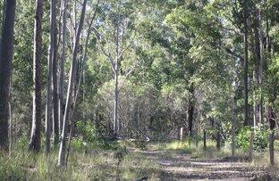 2 & 3 Ducks Lane, Rappville NSW 2469