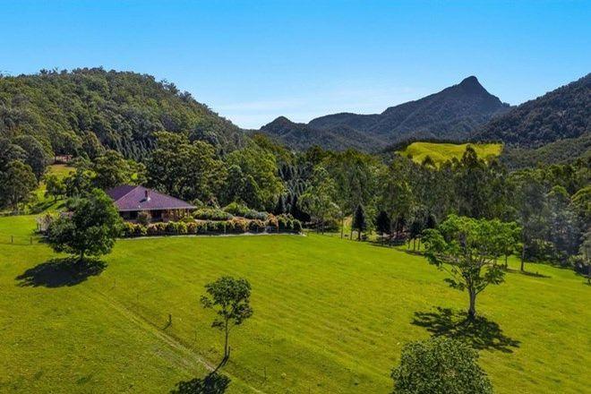 Picture of 1787 Kyogle Road, UKI NSW 2484